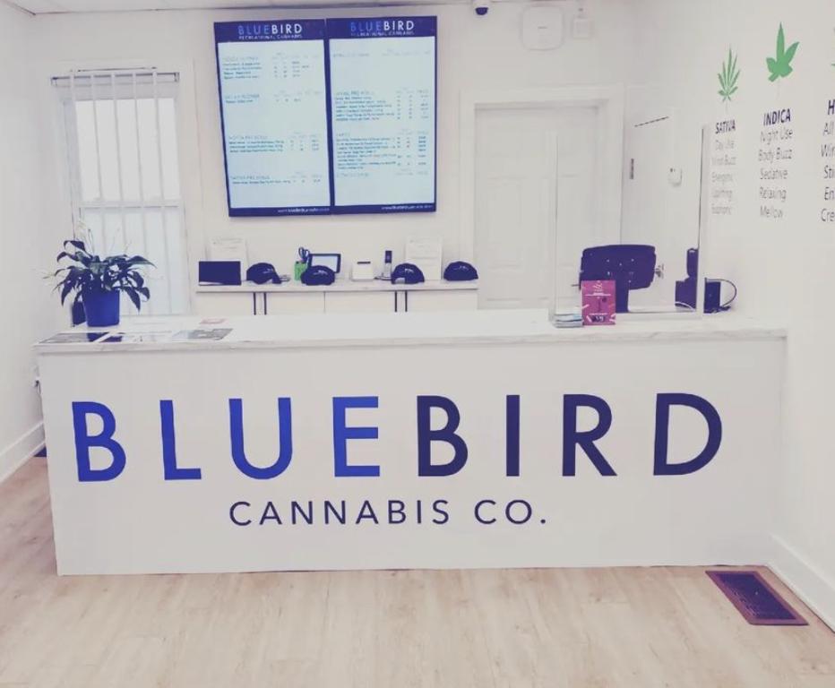 BlueBird Cannabis Center Town