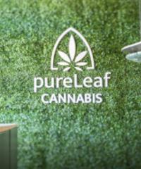 pureLeaf Cannabis