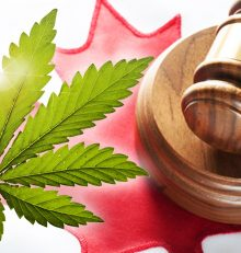 Is Marijuana Legal in Canada?